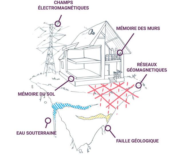 influences en géobiologie Laurence Labadié Géobiologue prestations de l'habitat